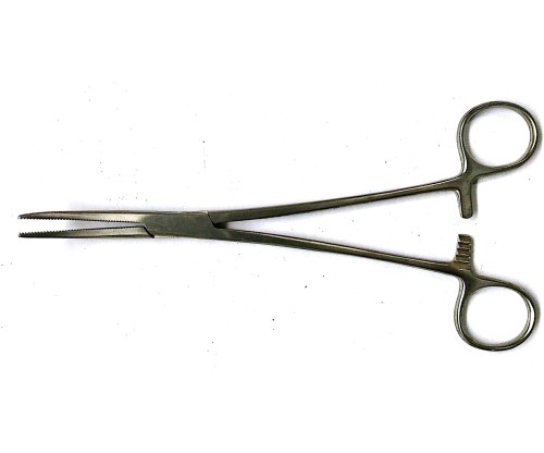 ARTERY FORCEP 8'' CURVED